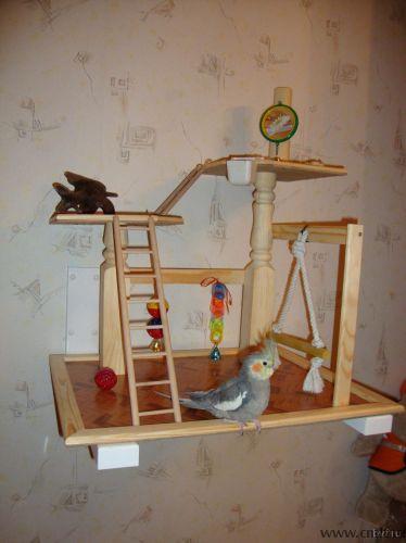 Площадка для попугая на заказ - Воронеж - Доска объявлений Камелот
