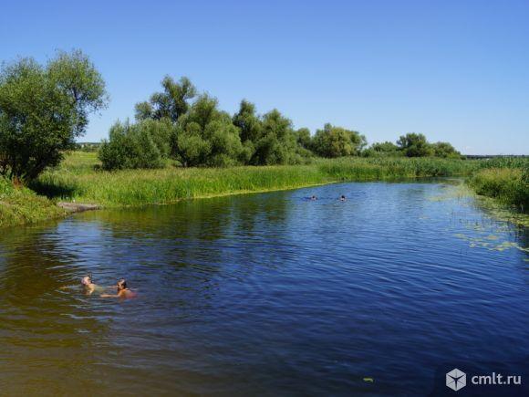 Эртильский район село шестаково